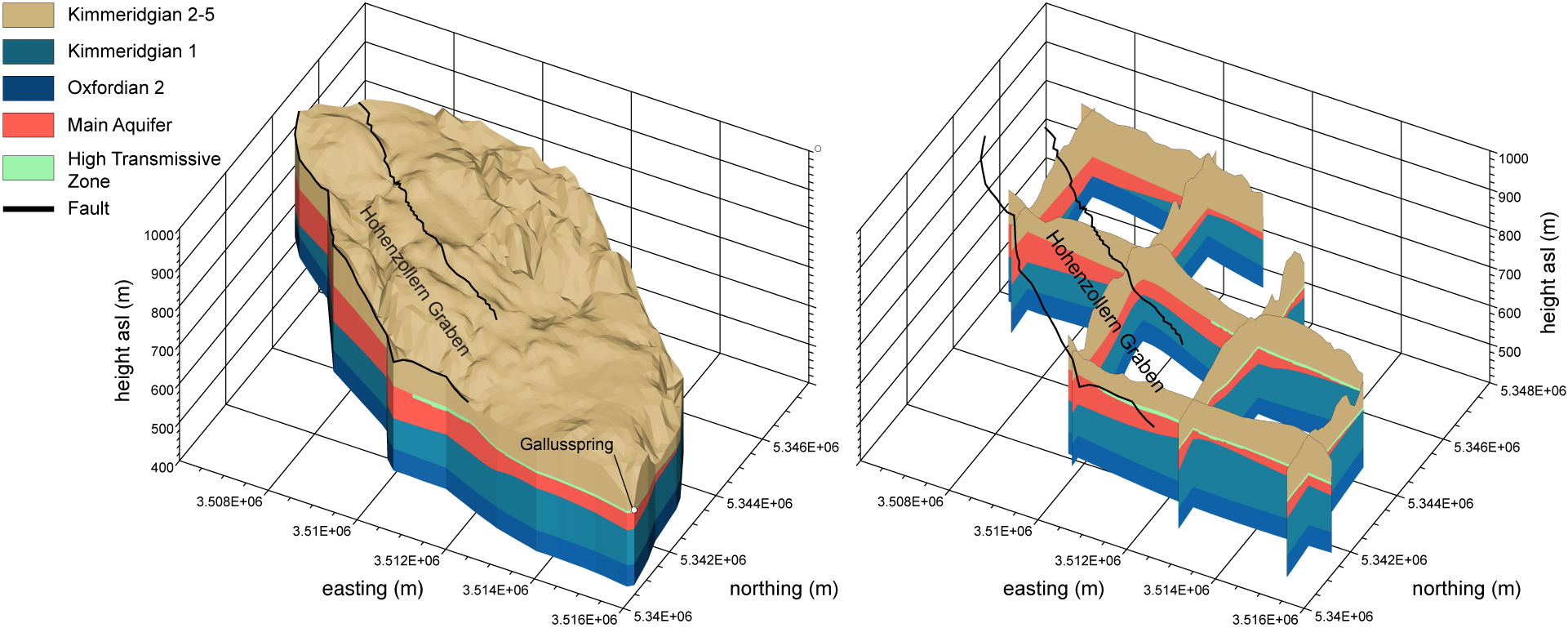 Double-continuum 3D model of the Gallusspring, Germany.