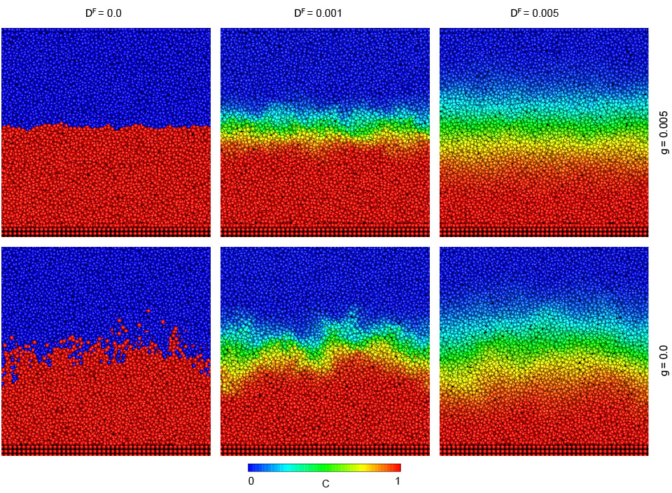 SPH simulations of microscopic interface fluctuations