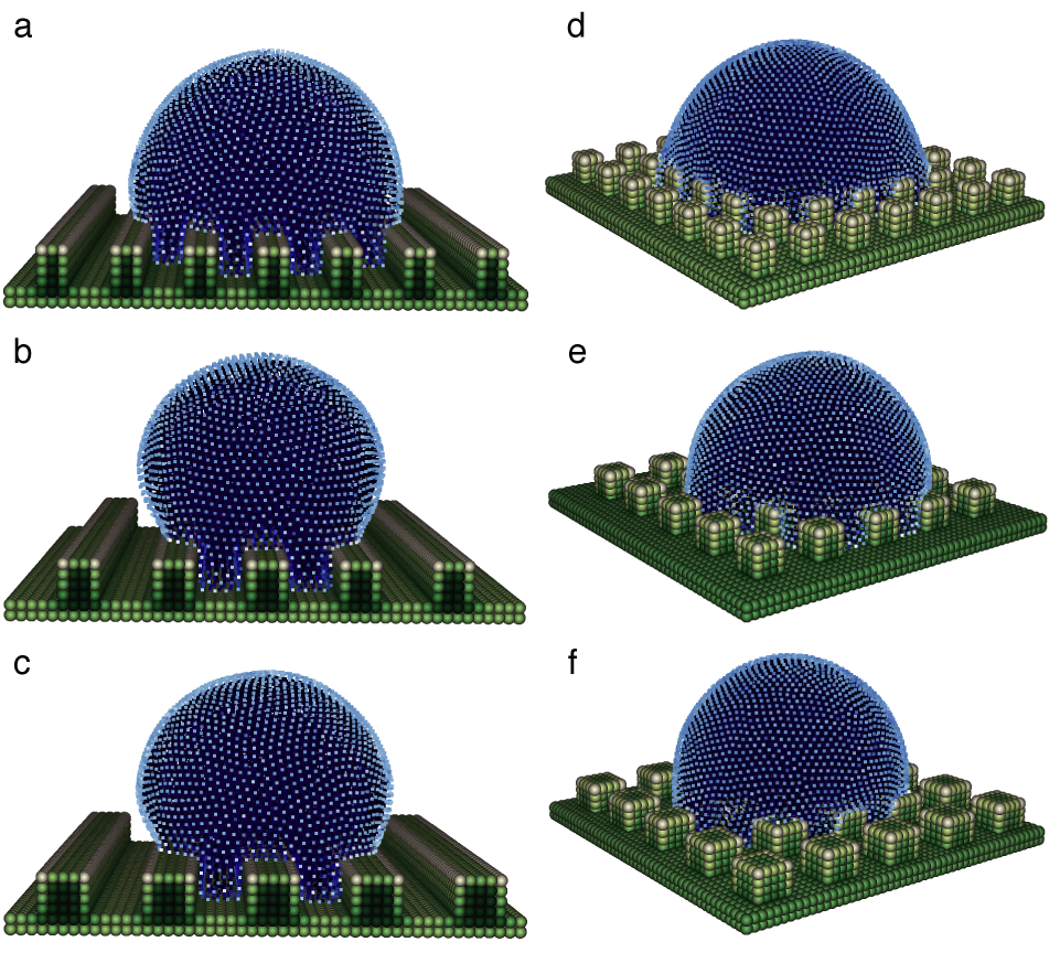 SPH simulations and effects of roughness on contact line dynamics
